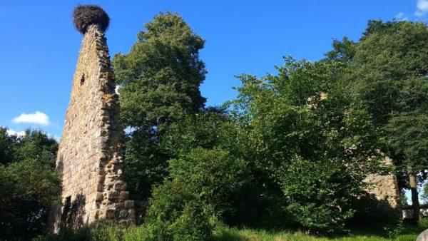 Kirchenruine Berkenlatten Lkr. Uckermark in Brandenburg mit einem Storchennest als guter Picknickplatz