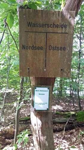 Hinweisschild auf die Wasserscheide Nordsee Ostsee an Havelquelle im Mueritz Nationalpark