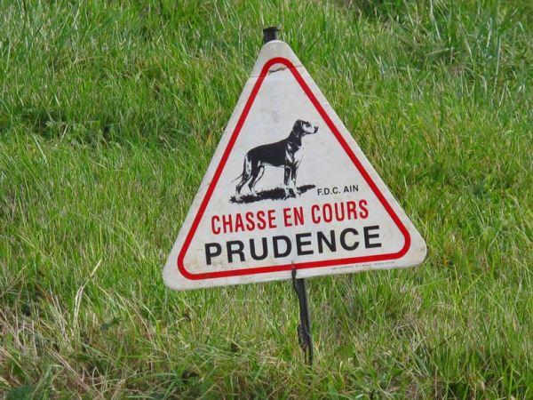 Motorradtour durch die Gorges de l'Ain: Warnschildes mit Jagdhund bei einer Treibjagd und der Aufschrift Chasse en cours Prudence
