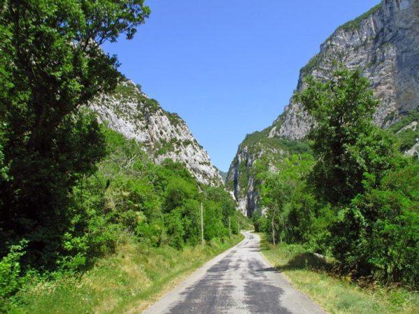 Bild vom Forêt de Saou in der Drôme, einem Naturschutzgebiet in einem zerklüfteten Felsmassiv in Südfrankreich, aufgenommen bei einer Motorradtour zum Mont Ventoux