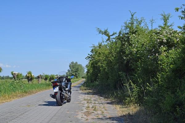 Motorrad Yamaha FJR 1300 auf einem Plattenweg im Vogelschutzgebiet Naturpark Westhavelland bei einer Motorrad-Hausrunde im Abseits