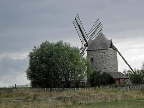 Bretonische Windmühle mit einem großen Baum am Weg zum Mont St-Michel