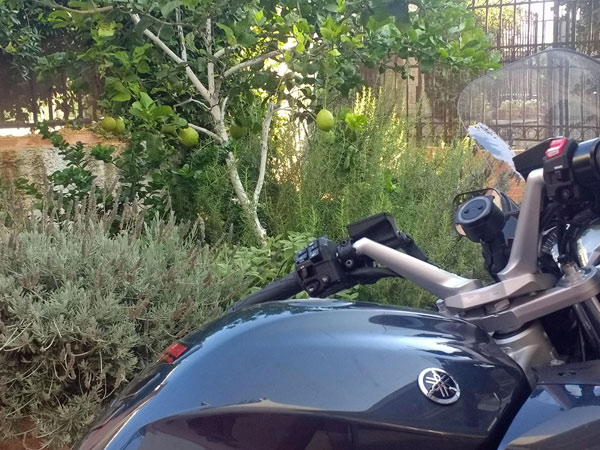Motorrad unter einem Zitronenbaum