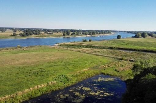 Elbauen bei Arneburg