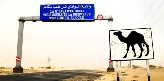 Lancement des travaux de dédoublement de la RN-3 à El-Oued