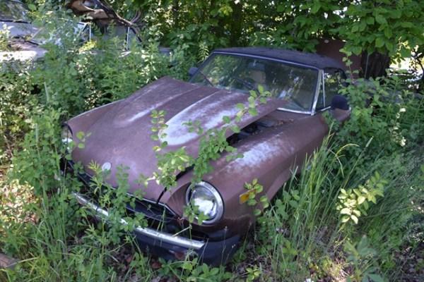 Este Fiat Spider es tan solo uno de los interesantes autos clásicos olvidados en un junker en Ann Arbor, Michigan. Fotos y vídeo: Andrés O'Neill, Jr.