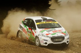 Marty Gallagher / Dean O'Sullivan Peugeot 208 R2
