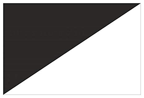 formula 1 significato bandiera bianco nera