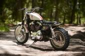 Harley-Davidson XL1200C Sportster by Hageman Cycles