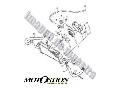 Eje rueda delantera DERBI FDS 50 1985-1988 repuestos de motos