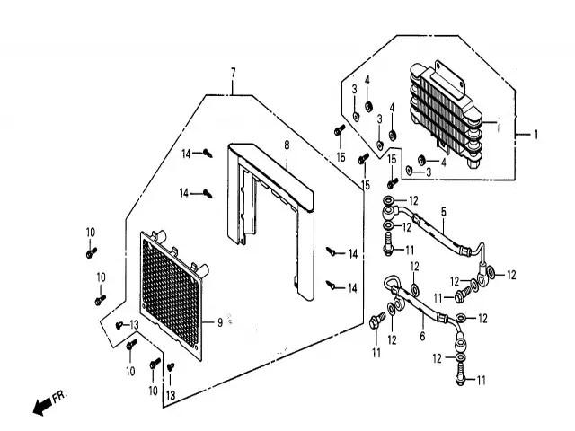 Embellecedor radiador Daelim Daystar 125 2004-2006