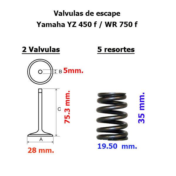 kit Válvulas Resortes y Guías Yamaha YZ WR 450 F 03-09 y