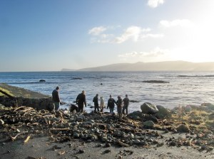 On a beach covered with kelp and seaweed, a small group of young adults are looking at things in the water