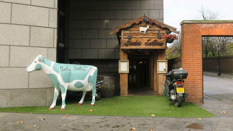 The cow of Bodo's Schloss