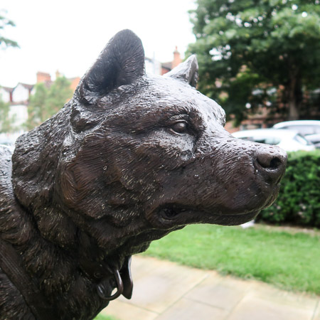 Sled dog monument at the Scott Polar Research Institute, Cambridge   Jill Browne