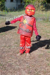 déguisement ninjago