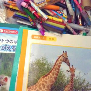 IMG_notebooks