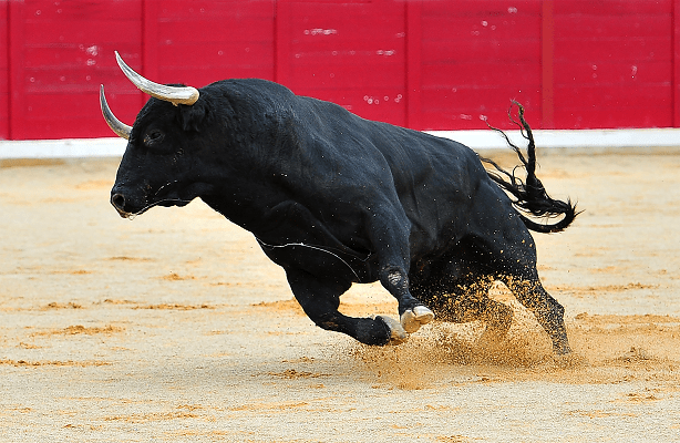 The Bull Is Back, And All-Time Highs May Not Be Far Behind
