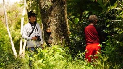 Pak Piter dan Bapa Lani di hutan kopi