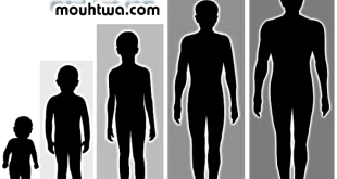 زيادة الطول طبيعيا