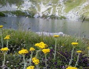 9. Седумдневна тура низ Македонските Национални Паркови и Мариовскиот Регион