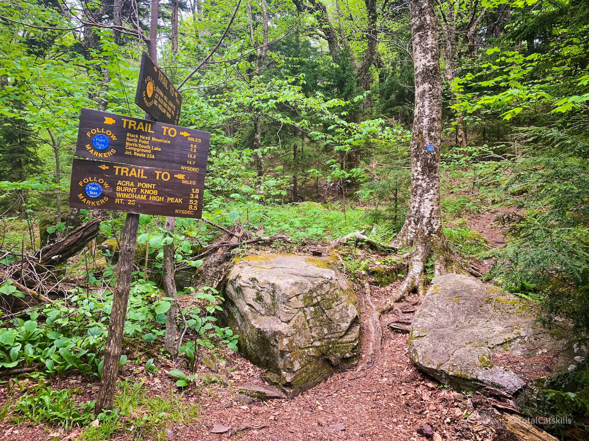 trail signs in woods