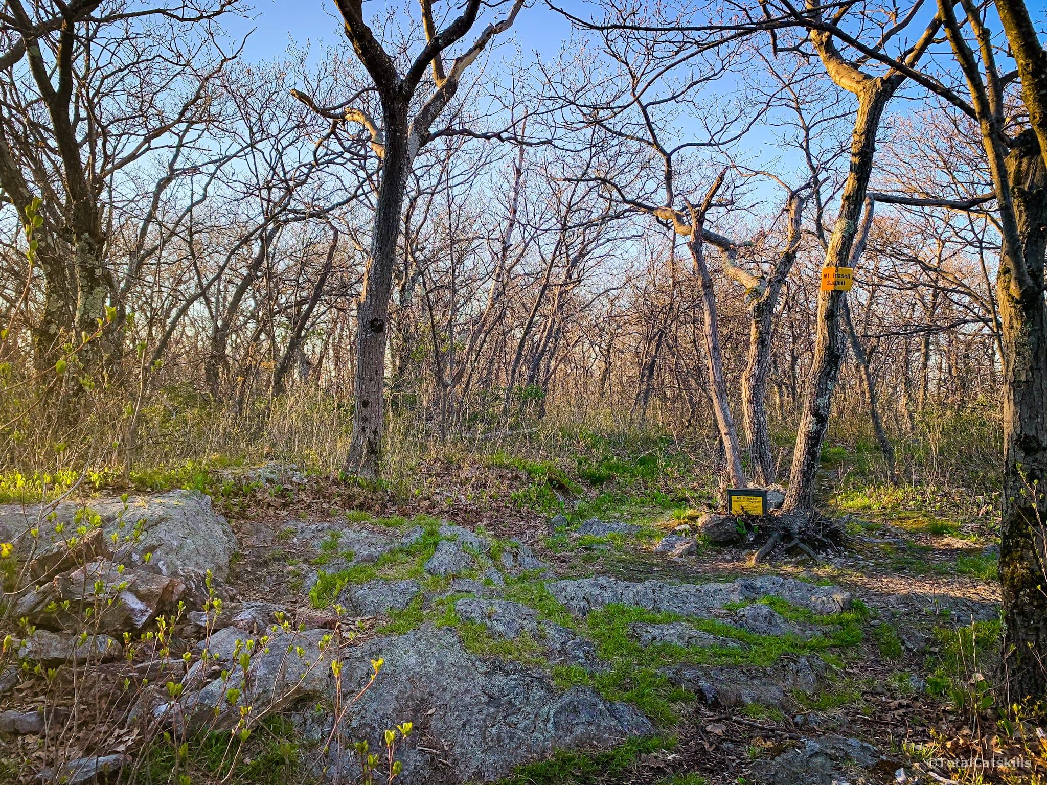 wooded summit