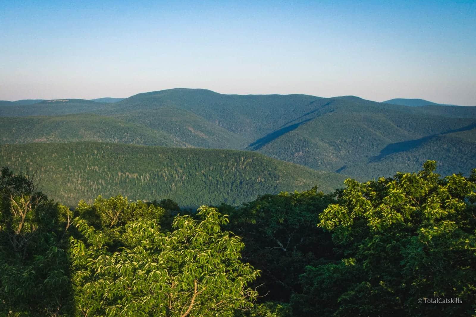 panther mountain summit
