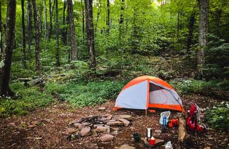 marmot brand tent in woods