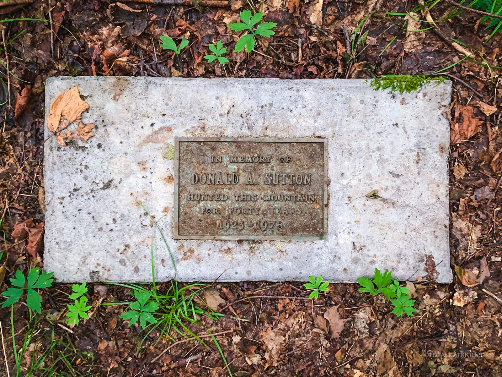 Donald A Sutton memorial plaque on forest floor