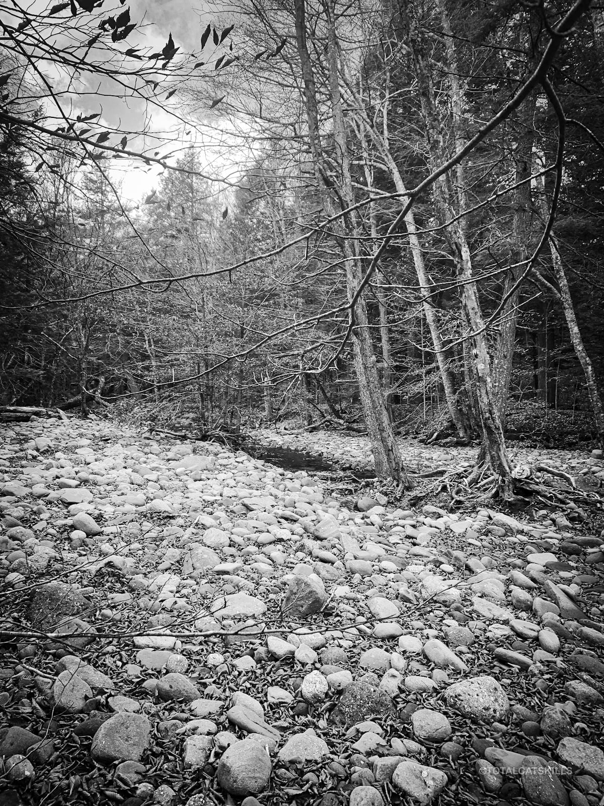 fisherman's path river bed
