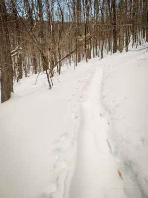 winter trail terms: snowshoe trench in snow