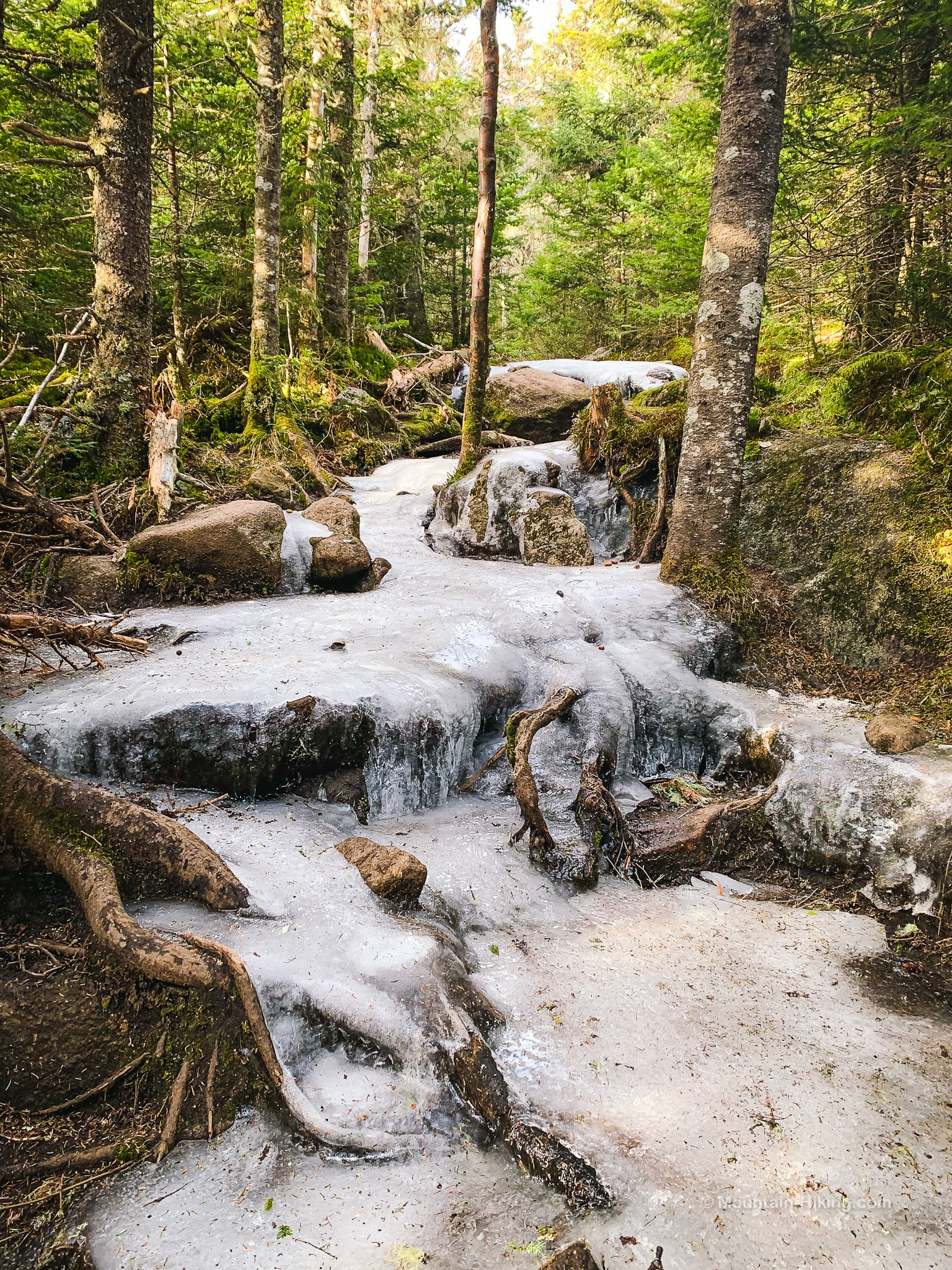icy mountain trail