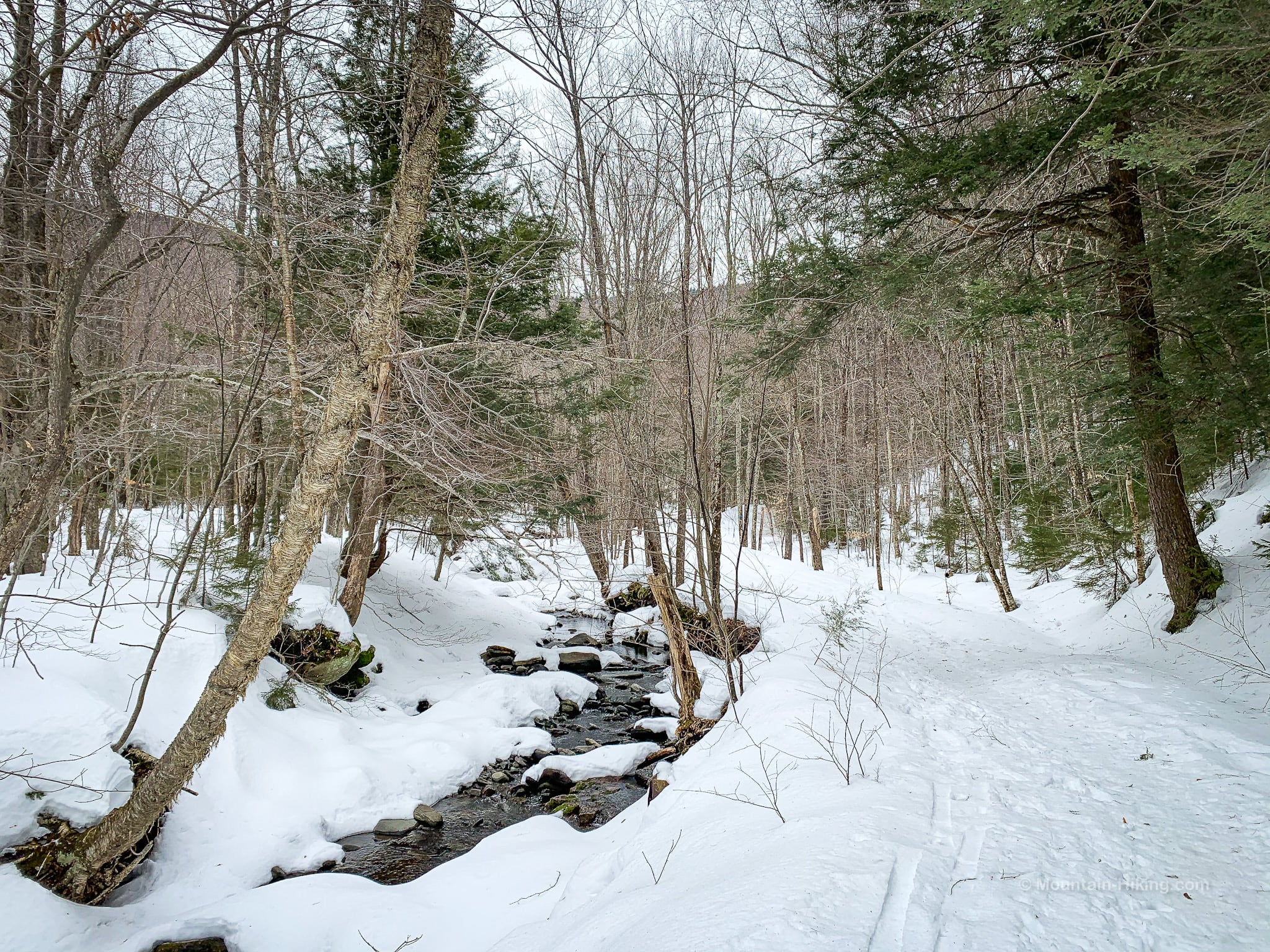 winter hiking trail, snowy