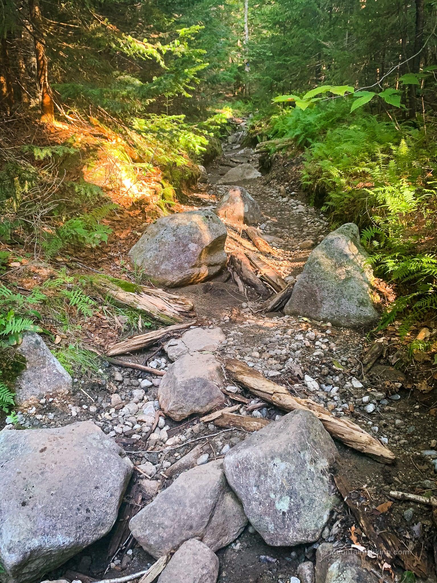 dry rocky trail