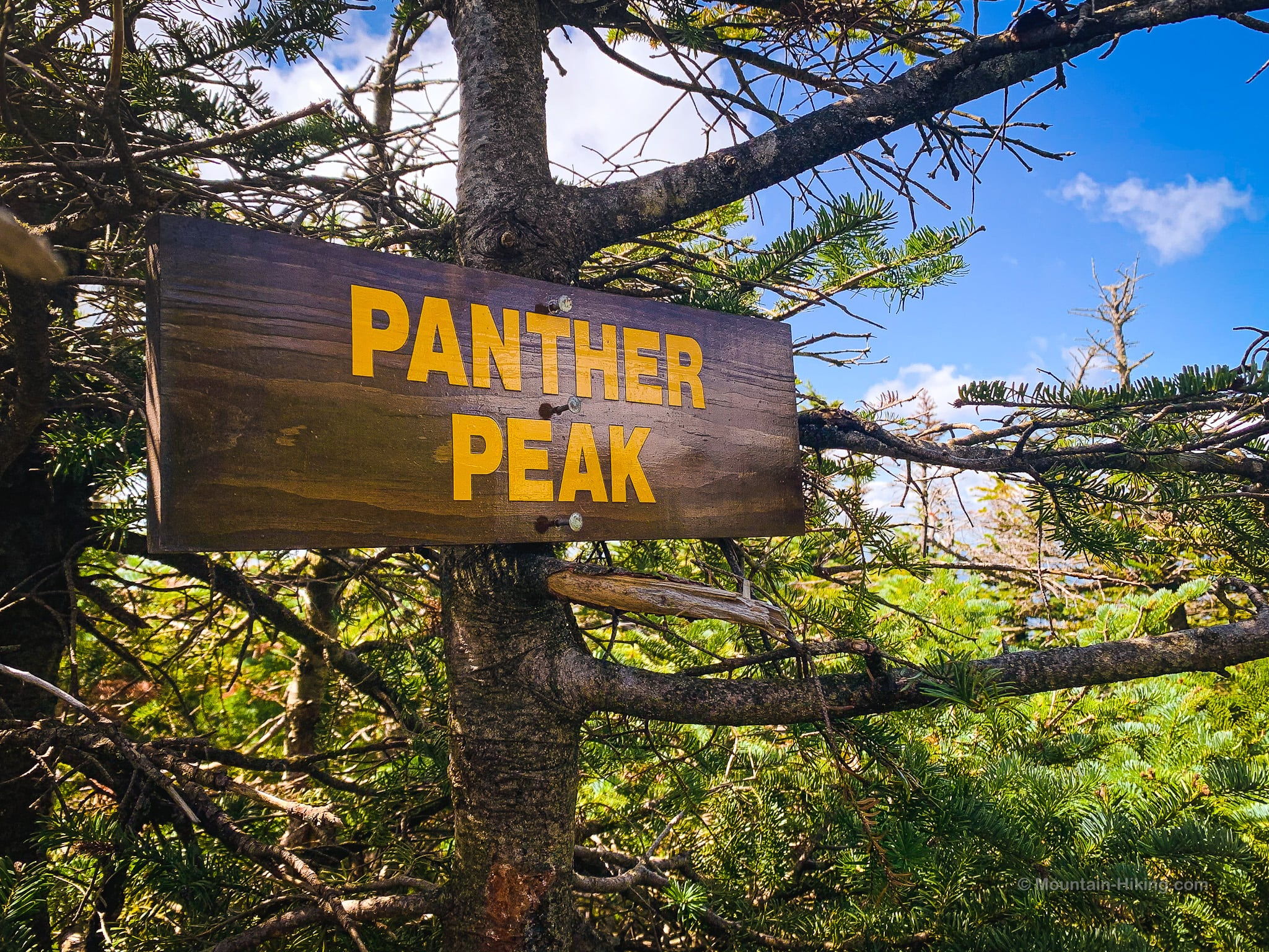 wooden sign at summit of Panther Peak in the Adirondacks