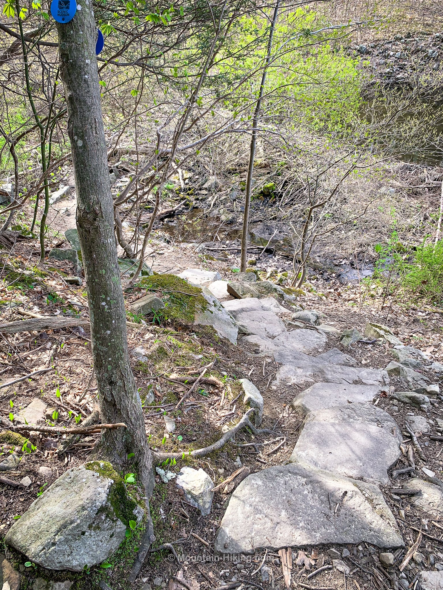 curved stone stairs in wood