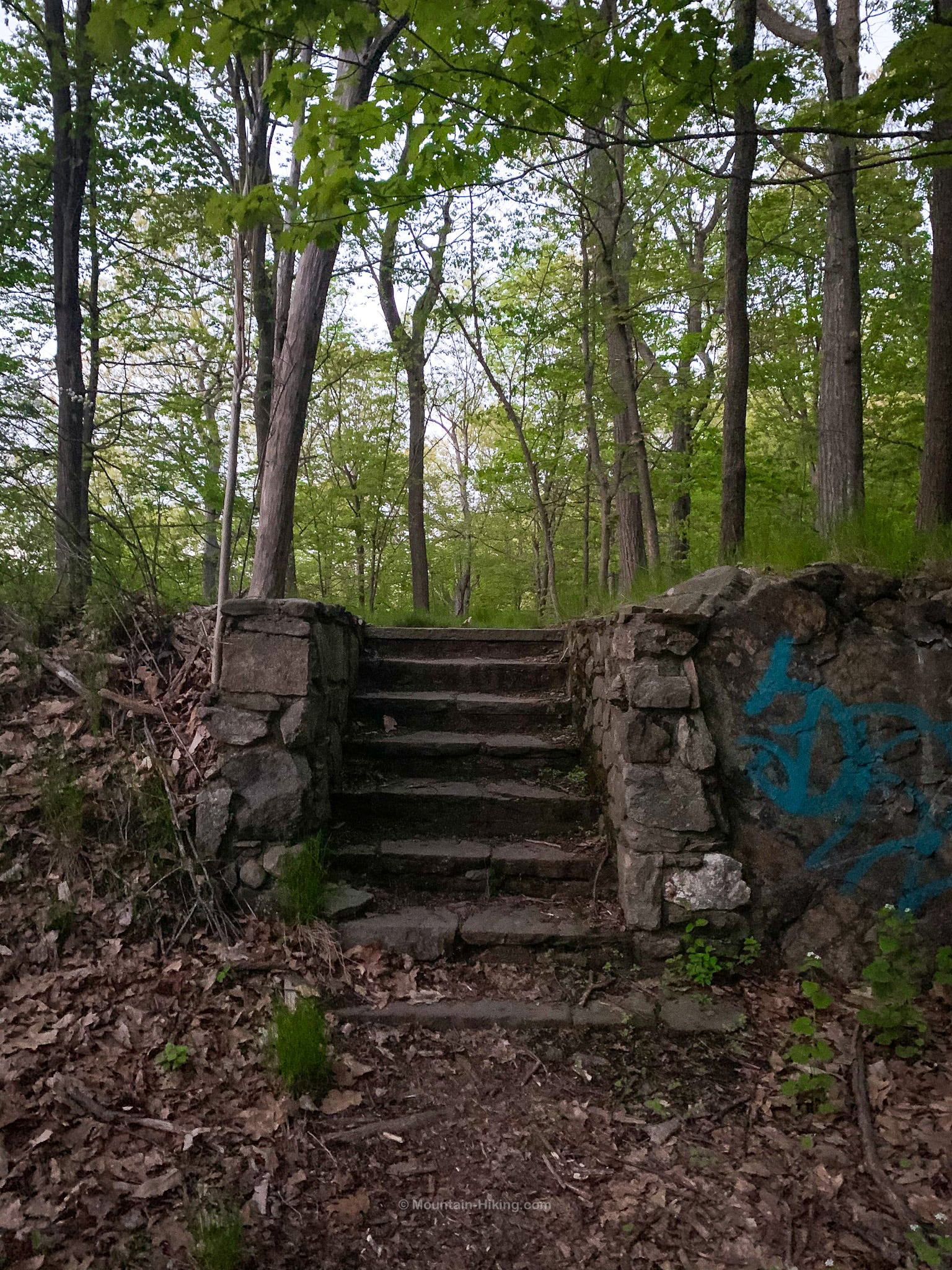 storm king mountain stone stairs in woods