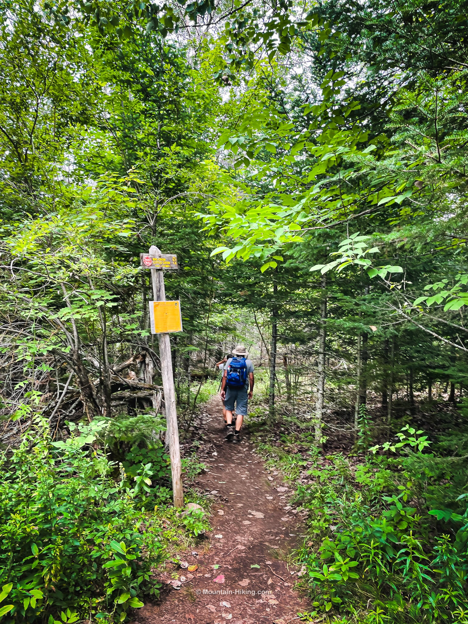 hikers on trail heading to Big Crow
