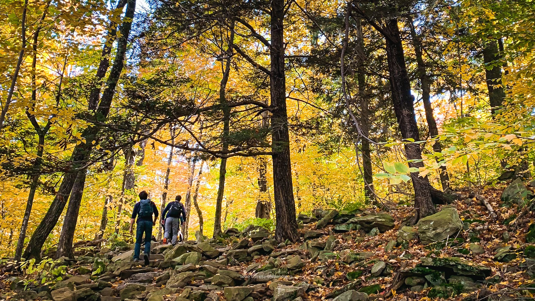 hikers climbing rugged trail in autumnal scene