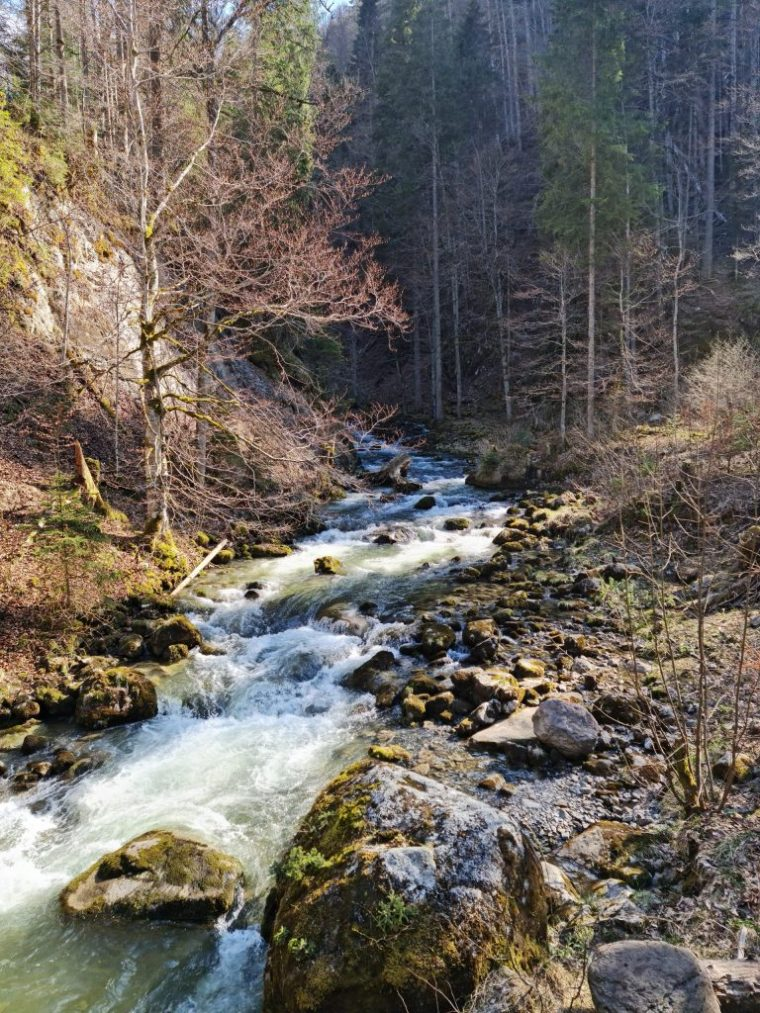 The river that feeds the Giessbachfälle