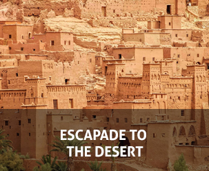ESCAPADE TO THE DESERT