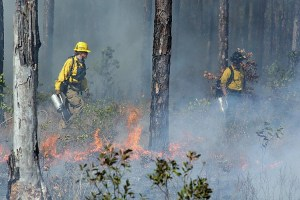 lighting-a-prescribed-fire-in-nc-on-right