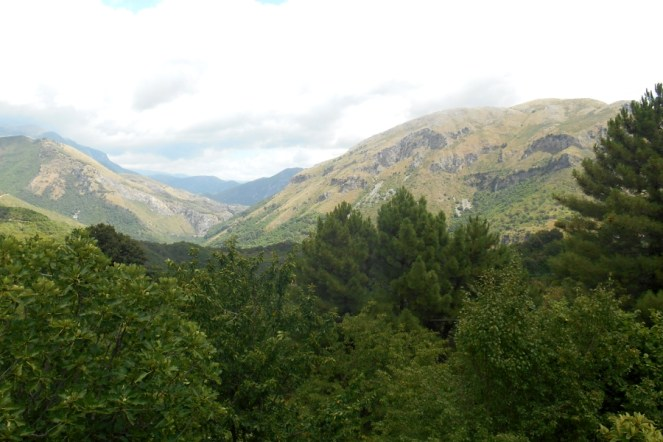 The valley of the Argentino torrent from afar