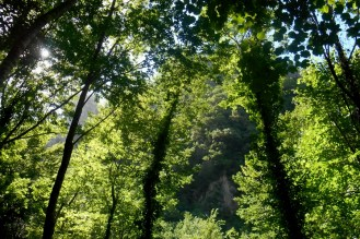 The Brancato valley