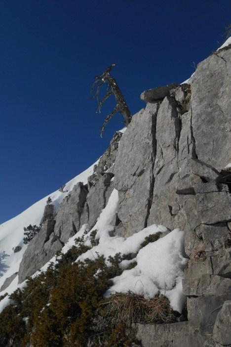Limestone rock buttress