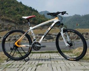best mountain bike under 1000