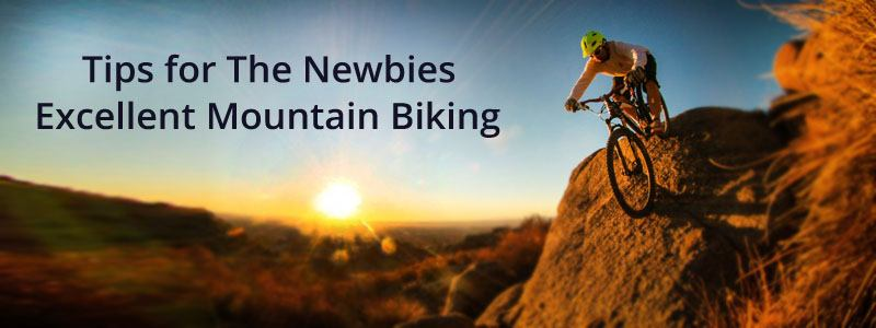 Tips for The Newbies Excellent Mountain Biking
