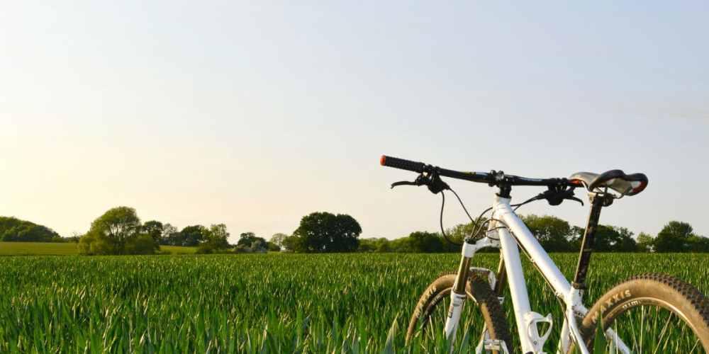 mountain bike grass field