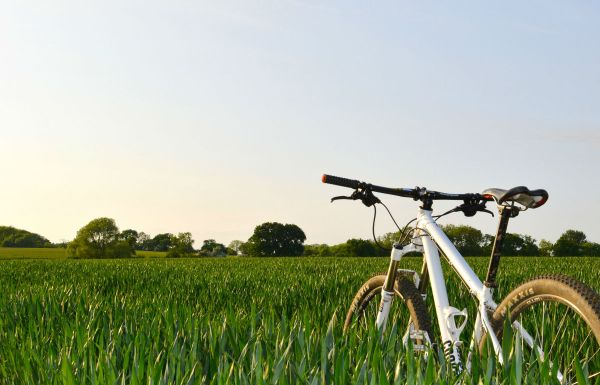 mountain bike grass field
